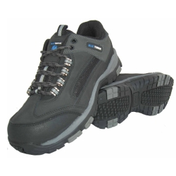 Blue Tongue Athletic Designed Industrial Work Shoe, Size 7 BTGBTS7